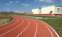 Какое выбрать покрытие для стадиона в школу